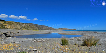 Baring Head and the South Wellington Coast