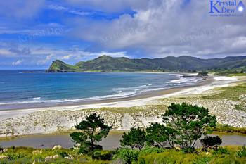 Medlands Beach On Great Barrier Island