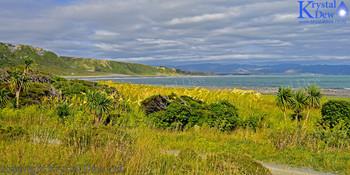 Palliser Bay From the Rimutaka Cycle trail