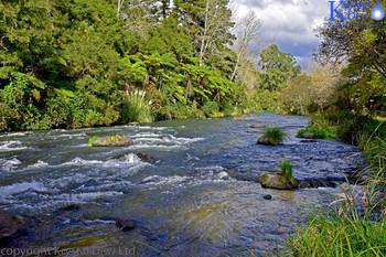 Tararua River