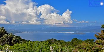 Wellington From Te Ahumairangi Hill