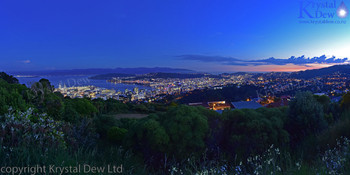 Wellington Lights At Night