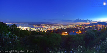 Wellington City Lights from Stelin Memorial Park