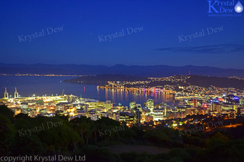 Wellington City Lights from Stelin Memorial Park