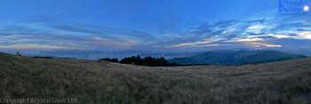 Wellington From Mt Kau Kau