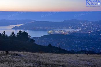Wellington at dawn from Mt Kau Kau