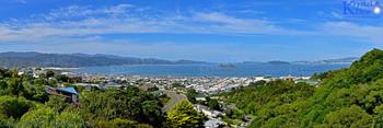 Wellington From Maungaraki