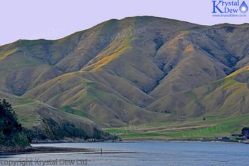 Marlborough Sound Hills, Arapawa Island