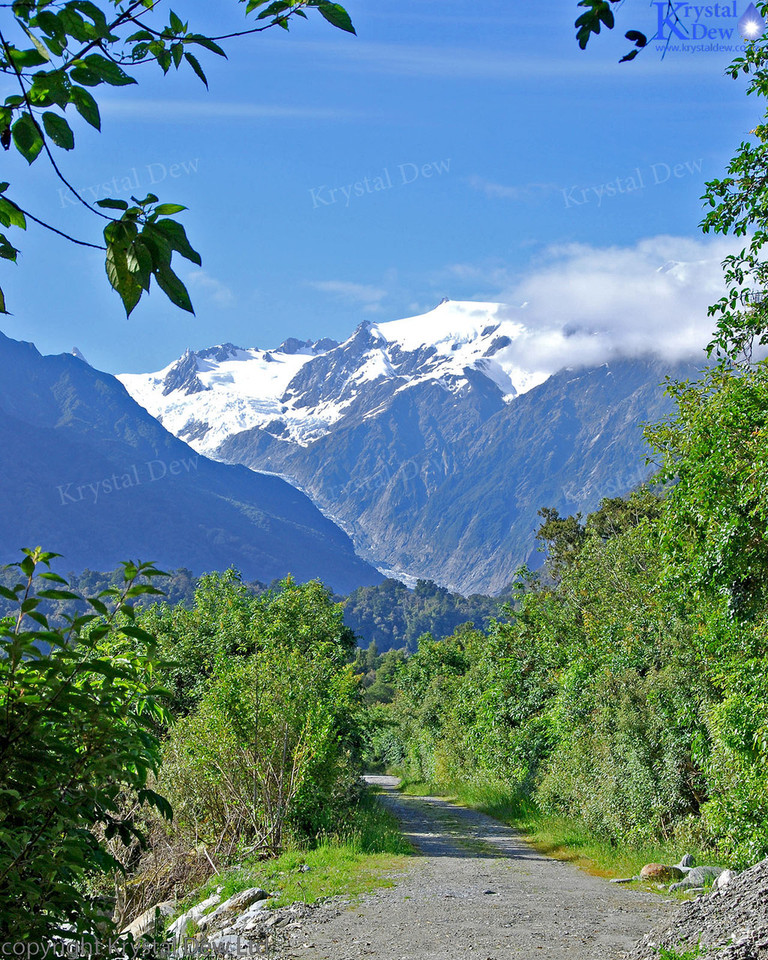 Frans Josef Glacier & Southern Alps From Canavans Knob
