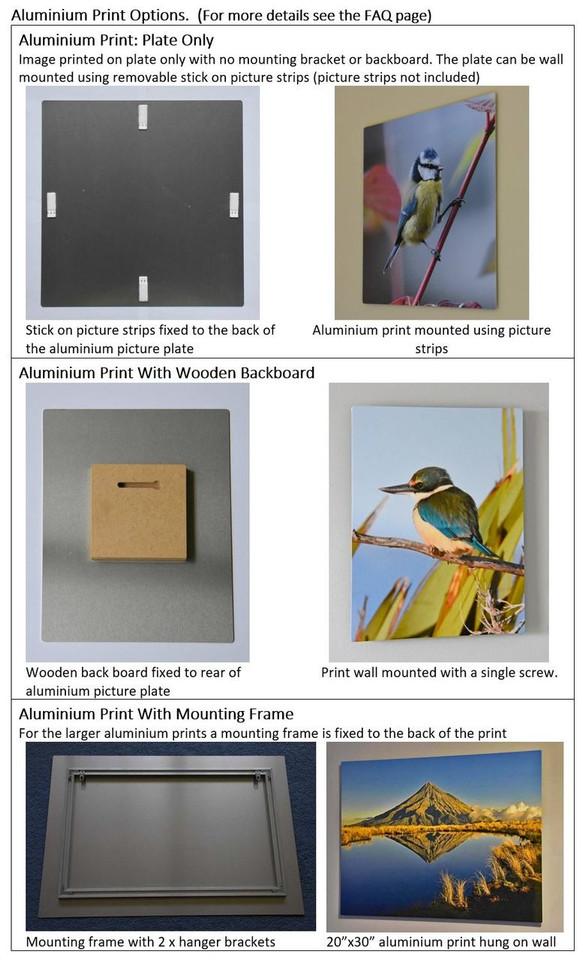 Aluminium Print Details