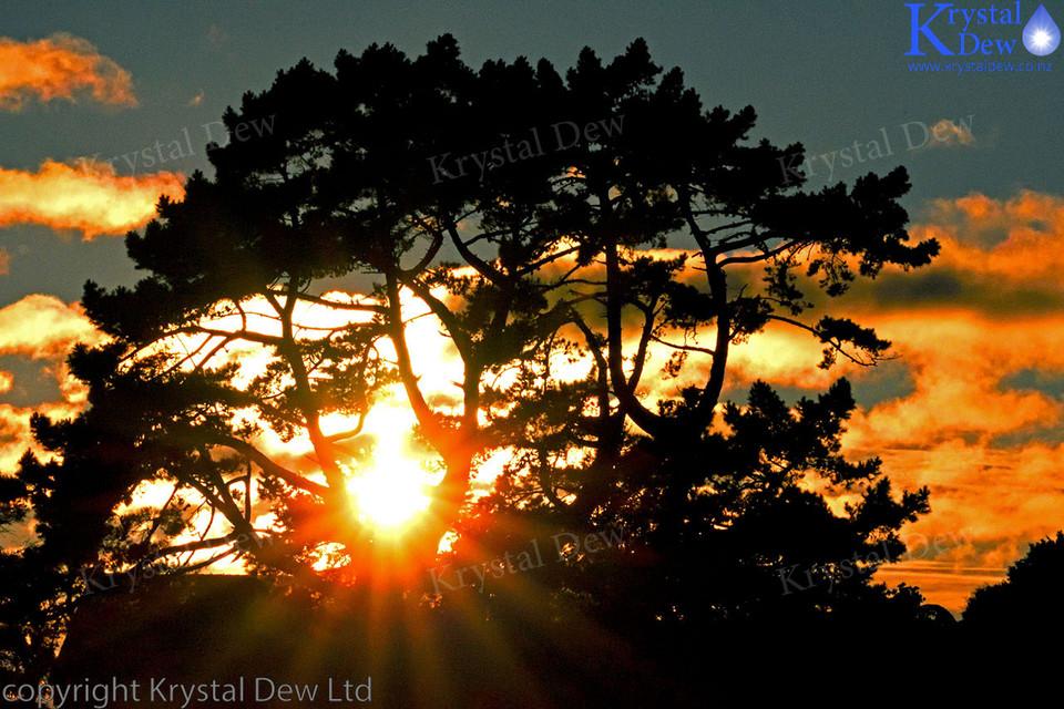 Sunrise from Frankley Rd