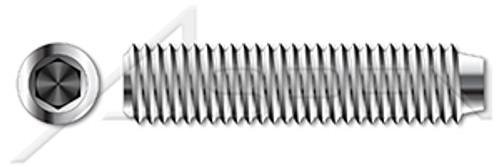 Socket Head Screw Thread Size #2-64 18-8 Stainless Steel