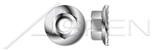 #10-24 Hex Flange Nuts with Locking Serrations, 18-8 Stainless Steel