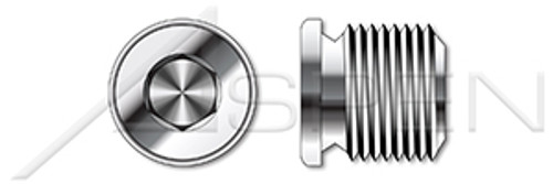 """1""""-11 DIN 908, Metric, Threaded Screw Pipe Plugs, Hex Socket Drive, Straight Thread, A2 Stainless Steel"""