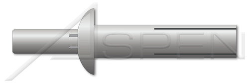 """5/16"""" X 21/32"""" Drive Pin Rivets, Aluminum Body / Aluminum Pin, Universal Head"""