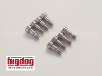 Big Dog Motorcycles PCB Hand Board Screws - 2004-Present (ALL MODELS)