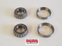 Neck Cup Bearings & Race Set (1999-Present)