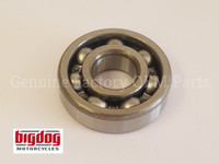 Counter Shaft Transmission Bearing (2005-11) ALL MODELS