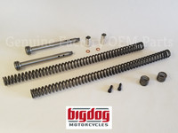 Internal Fork Tube Set (Dampers, Springs & Hardware) 1999-2011