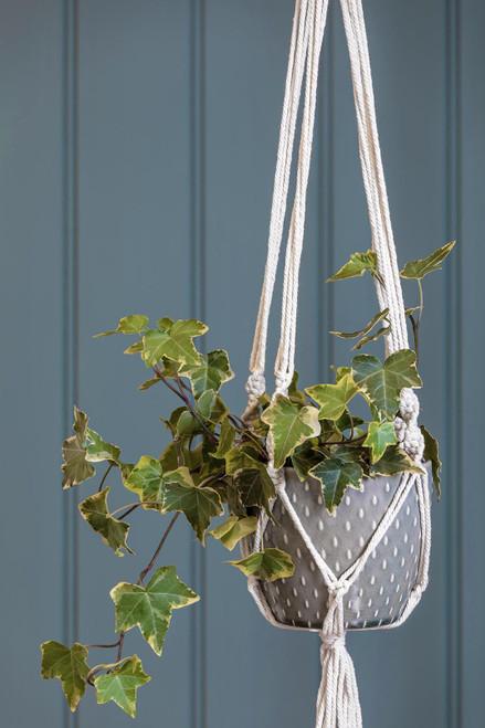 Burgon & Ball Glazed Macrame Indoor Plant Pot