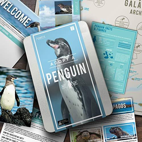 Gift Republic Adopt A Penguin Gift Box