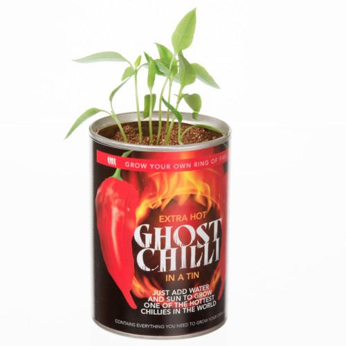 GYO Ghost Chilli