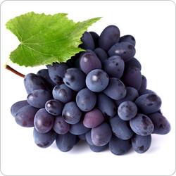 Concord Grape  | Nevada Vapor - The Premium Choice