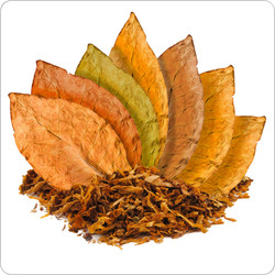 7 Leaf Tobacco Blend  | Nevada Vapor - The Premium Choice