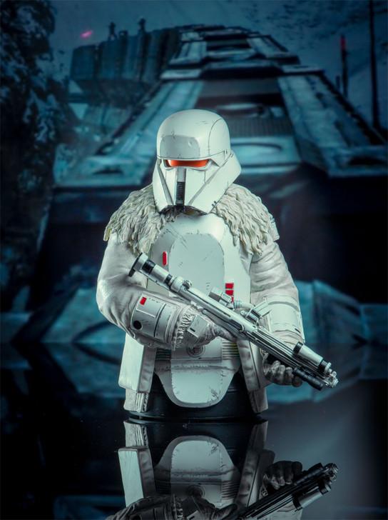 Star Wars Range Trooper 1/6 Scale Resin Bust