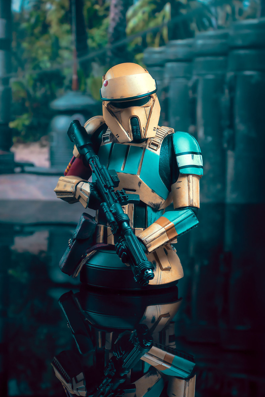 Rogue One: A Star Wars Story™ - Shoretrooper Mini Bust