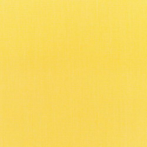 Canvas Buttercup