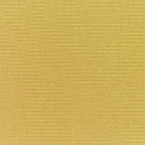 Canvas Brass