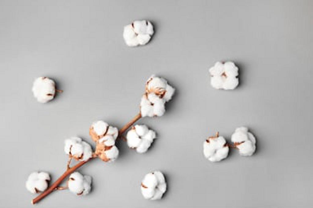 Fleur de Coton - Cotton Flower Room Spray