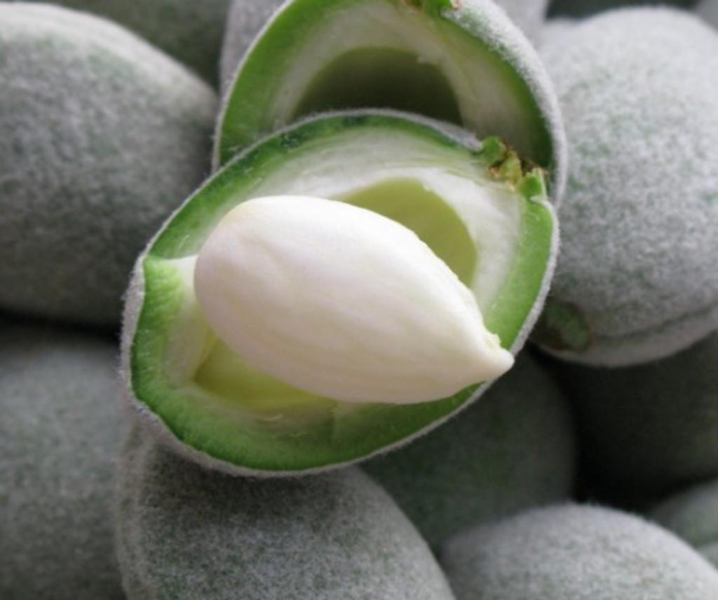 Amande verte - Green almond French Room Spray