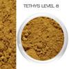 Tethys | Golden with Peach Undertones