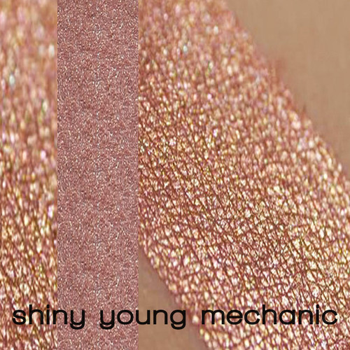 Shiny Young Mechanic