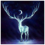 Psychic Talk to Animals, Spirits, Familiars and Pets Magick Spell