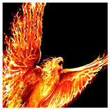 Phoenix Rising New Beginnings Spell! Rise from The Ashes! Success Respect!