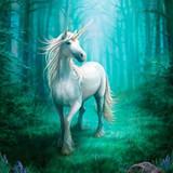 Stella, Magnificent Unicorn Healing Spirit Radiates Pure White Magick