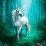 Madelyn, Magnificent Unicorn Healing Spirit Radiates Pure White Magick!