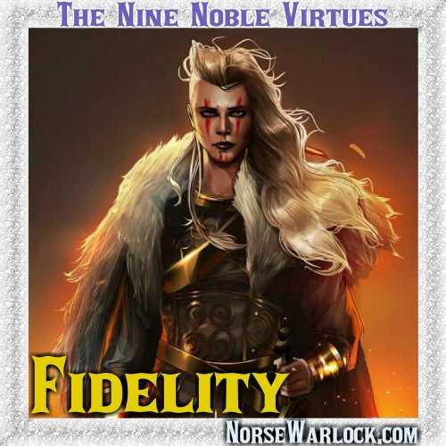 9-fidelity.jpg