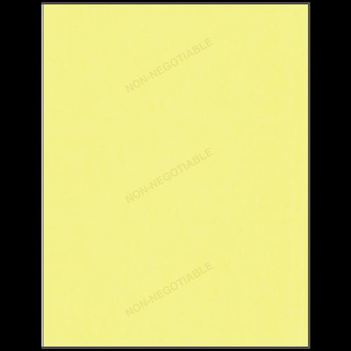 501 - Non-Negotiable Duplicate Part 2 Sheet (Yellow)