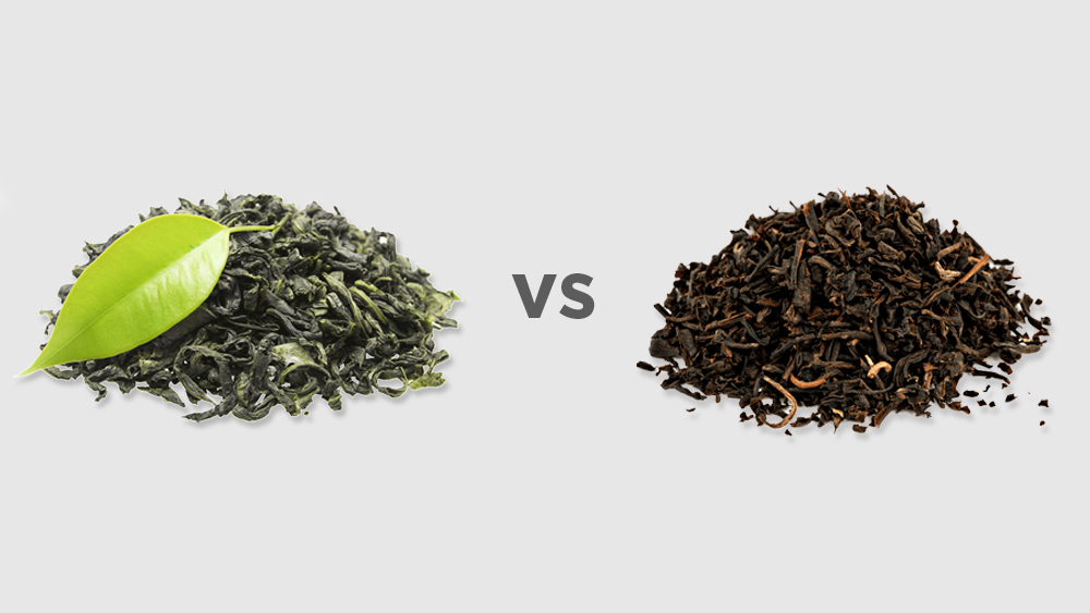 Green Tea vs. Black Tea: What You Should Know About These Popular Teas - AIYA America, Inc.