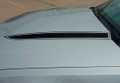 Ford Mustang Dominator Hood Spears Graphic Kit Close Up