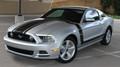 2013-2014 Ford Mustang Prime Stripe Kit