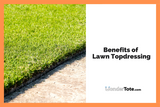 Benefits of Lawn Topdressing
