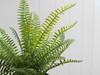Fern Artificial Plant