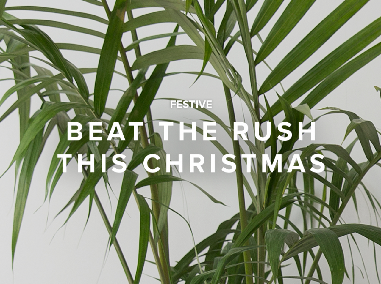 Beat the Rush this Christmas