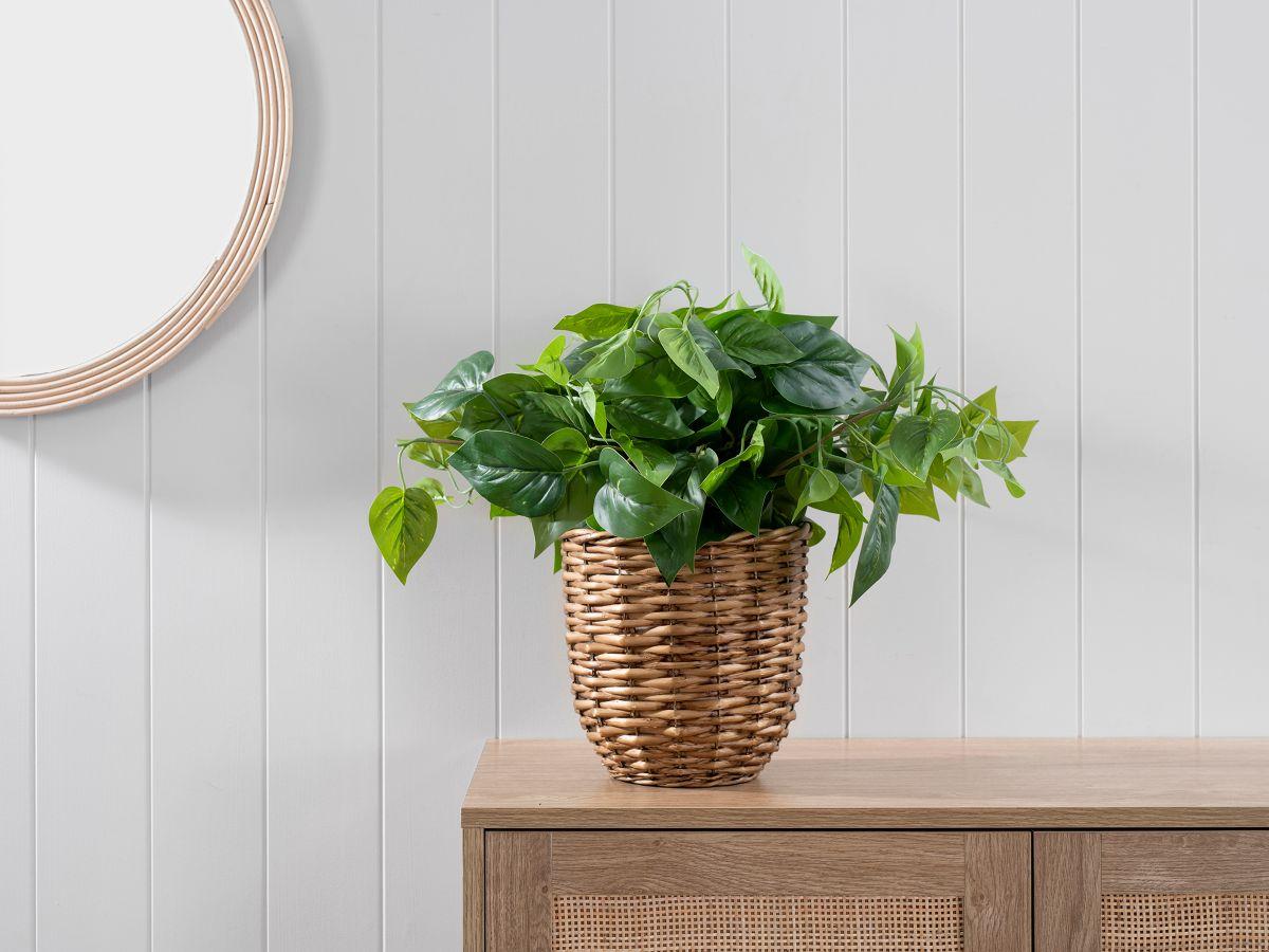 Heart Leaf in Woven Basket