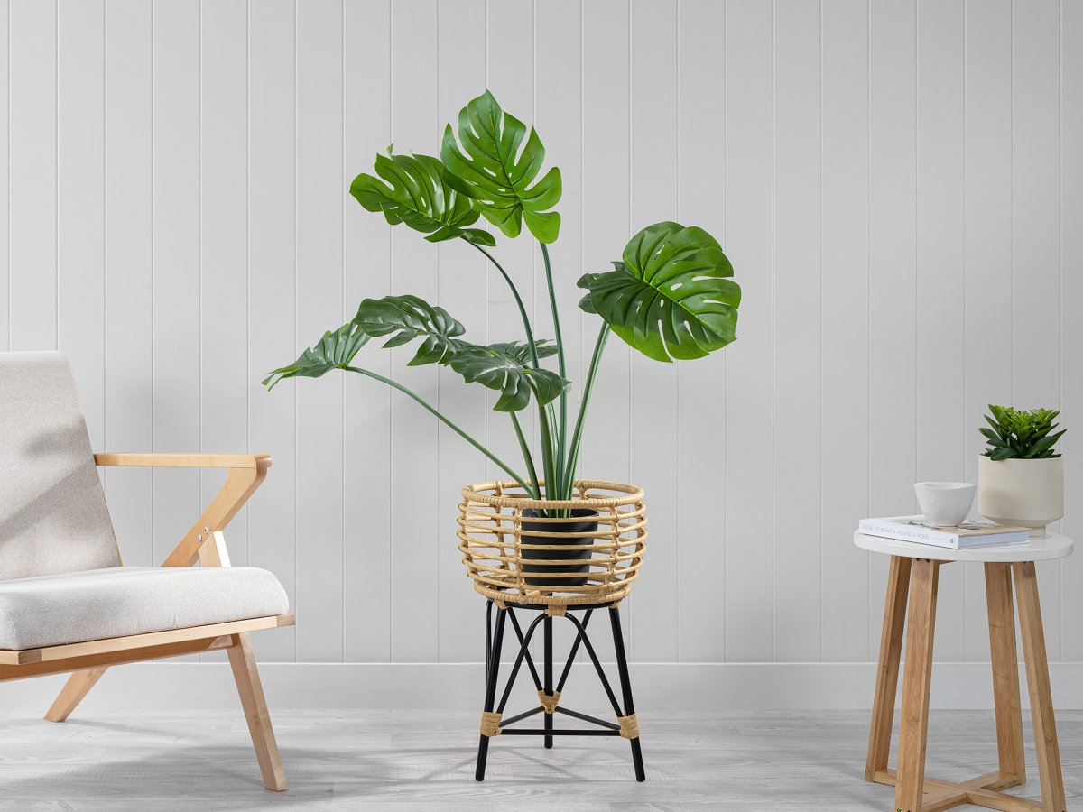 Honolulu Plant Stand - Small - Black